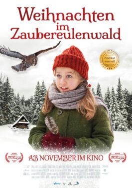 Weihnachten im Zaubereulenwald Poster